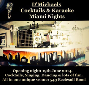 D'Michaels Cocktails and Karaoke Miami Nights